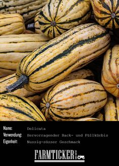 """Der Delicata wird auch """"Sweet Potato"""" genannt. Er eignet sich hervorragend zum Backen und Füllen.  Hier geht's zum Rezept: Pumpkin, Vegetables, Food, Bakken, Recipies, Pumpkins, Essen, Vegetable Recipes, Meals"""