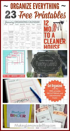 23 Free Printables to Organize Your Entire Life! You'll find everything from budget worksheets, bill pay schedules, menu planning, daily planners, password organizers, home binders, pretty labels, and SO much more-- check it out now, your future organized self with thank you!
