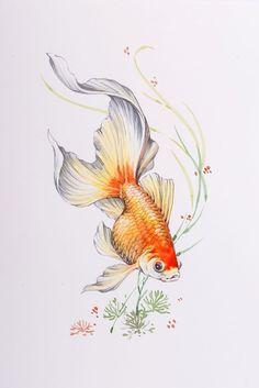 Resultado de imagen para golden fish tattoo