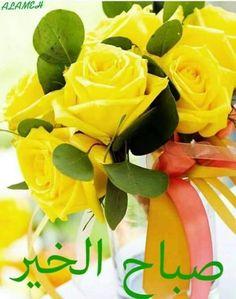 Good Morning Love You, Good Morning Beautiful Flowers, Good Morning Quotes, Beautiful Roses, Night Quotes, White Roses, Yellow Flowers, Rose Flowers, Send Roses