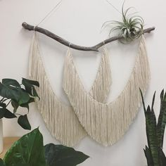 Today's work in progress  . . . . #wip #handmade #supporthandmade #shopsmall #sanluisobispo #driftwood #wallart #instaart #wallhanging #tapestry #macrame #neutrals #plants #airplant #homedecor #bohohome #bohemian #radicalsoulscollective