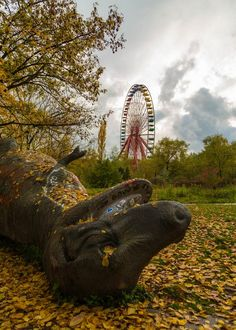 Abandoned amusement park in Berlin -  ferris wheel still operates via wind power only and screams as it turns. Eerie.