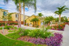 5402 Balboa Arms Dr 437, San Diego, CA 92117. 4 bed, 2 bath, $409,000. You will love this f...