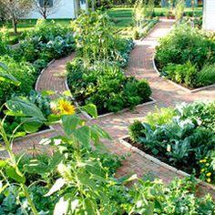 Garden with Paths