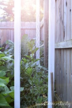 Upcycled Garden Trellises: from salvaged scrap wood to functional vertical garden space