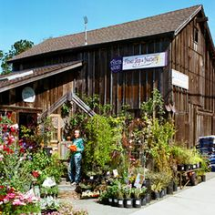 One perfect day in Half Moon Bay: Alena Jean Flower Shop & Nursery