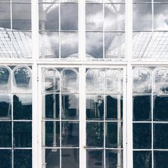 Visited batman's castle in Nottingham today, turns out he owns a stunning greenhouse as well  full tour in my story ☝️ . . . #welltraveled #mytinyatlas #greenhouses #nottingham #wollatonhall #apdmtravels