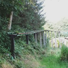 An abandoned theme park called Camelot