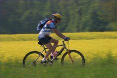 Die vielfältige Auswahl an Radwegen in der Radregion Bad Radkersburg wird auch Sie begeistern! #Regionbadradkersburg #Radregion #Radtour #Urlaub