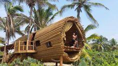 ARTEGUADUA COLOMBIA : Playa Viva México