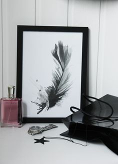feather illustration, ink print in black and grey