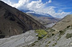 River Bed with Green Oasis in the High Altitude Desert of Nepal