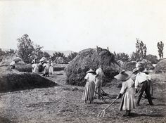charles Negre, 1865, moissonneurs près de Grasse. albumine