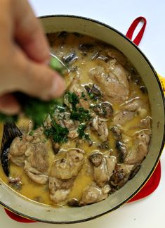 Creamy (kosher) Chicken with White Wine + Mushrooms from Jewhungry the Blog