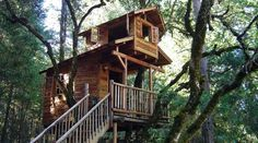 Build your own treehouse design in backyard for kids and adult (if it needed). These 36 pics will make you get more inspiration to make it real!