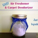Homemade Air Fresheners: Room & Carpet Deodorizers