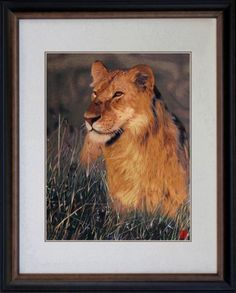 [+1]  King Silk Art 100% Handmade Embroidery Framed African Lioness in the Grass Chinese Print Wildlife Animal Painting Gift Oriental Asian Wall Art Décor Artwork Hanging Picture Gallery 74072