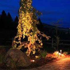 Find This Pin And More On Outdoor Lighting By Omarabuhamda