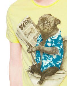 Bershka France - T-shirt imprimé chien