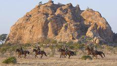 Limpopo Horse Safaris, Botswana