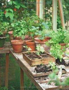 Gartenschätze: Küchengarten für Selbstversorger GU Garten Extra: