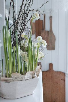 VIBEKE DESIGN: First springlike signs ..... ever! Like the music pages tucked in the pot