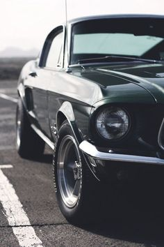 Ford Mustang GT350 Fastback 'Bullit'. Steve McQueen knows what to drive.