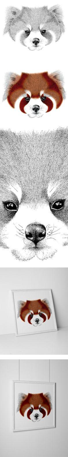 Red Panda by Kelsey Emblow, via Behance