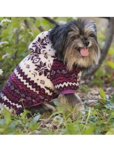 Some dogs do not have a natural coat thick enough for winter. If a dog's coat is not enough, doggie sweaters, doggie coats, or doggie hoodies are needed. Online Pet Supplies, Dog Supplies, Dog Winter Coat, Winter Hats, Dog Coats And Sweaters, Small Dog Accessories, Fleece Dog Coat, Whippet Dog, Hunting Dogs