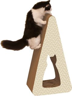 Imperial Cat Pyramid Recycled Paper Scratching Post & Reviews | Wayfair