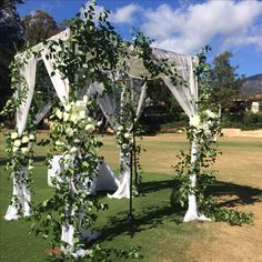Cody Floral Design. Our canopy or Chuppah  designed with wild vines and sheer fabric with a hint of floral décor.