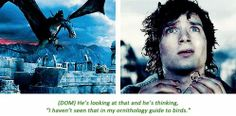 The Lord of the Rings commentary