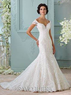 David Tutera for Mon Cheri - 116201 � Aura - Off-the-shoulder embroidered Venise lace appliqu�, tulle and organza over satin trumpet gown with illusion lace cap sleeves, deep sweetheart neckline, illusion lace low back bodice with crystal button closures, dropped waist, scalloped hemline, chapel length train.Sizes:�0 � 20,�18W � 26WColors:�Ivory/Gardenia, Ivory, White