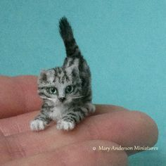 1:12 OOAK realistic SILVER TABBY KITTEN Handmade Dollhouse Cat by Mary Anderson