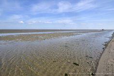 Das #Wattenmeer ist ein Gebiet von fast 10.000 Quadratkilometern. #WattWiki