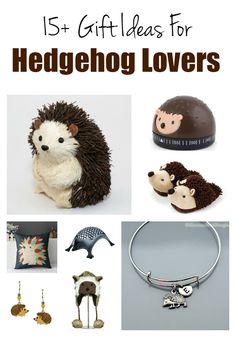 Adult Hedgehog Lover Gift Ideas - gifts that hedgehog enthusiasts or hedgehog owners will love.