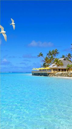 101 Most Beautiful Places You Must Visit Before You Die Fiji Islands. Just one of the 101 Most Beautiful Places You Must Visit Before You Die. Vacation Places, Vacation Destinations, Dream Vacations, Vacation Spots, Places To Travel, Places To See, Tropical Vacations, Tropical Beaches, Holiday Destinations