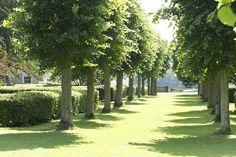 Parkland at Althorp House, Northamptonshire, England, UK » Spencer of Althorp