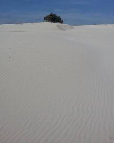 by http://ift.tt/1OJSkeg - Sardegna turismo by italylandscape.com #traveloffers #holiday | Welcome to Sardinia's desert #pasquetta2016 #sardegna #sardinia #igersardegna #igers_sardegna #igers #instasardegna #ig_sardegna #desert #thisissardinia #beautiful #sardiniamylove #instagood #nature #photooftheday #all_shots #travel #travelgram #lanuovasardegna #sardegna_super_pics #nofilter #paradise #ig_captures #igersitalia #landscape #instagramers #ig_europe #bestoftheday #loves_united_sardegna…