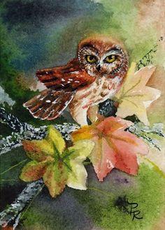 'Tiny Owl' by Paulie Rollins