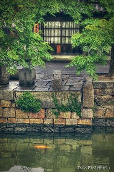 Kurashiki, Okayama, Japan; it's beautiful and the old merchant quarter is quite famous; had the most beautiful snowy morning of my life here and the hottest bath ever in the monastery where we were graciously put up (yow!)