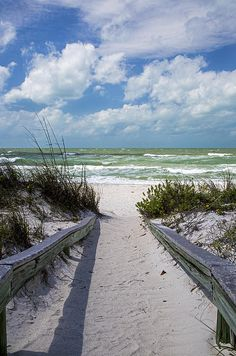 Pass-a- Grille Beach is near  St.Petersburg Beach. Sunsets, long walks, powdery sand and a laid-back vibe.