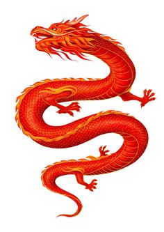 Dragons are a girl's best friend by The Drawing Book Studios , via Behance