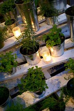 great idea for a herb garden....might be my DIY project