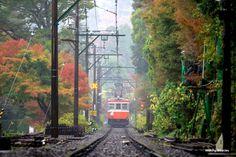 2015.11.14 箱根散歩 雨の中を走る箱根登山鉄道 OM-D E-M1+40-150mm f2.8