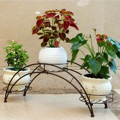 AISHN Elegant Arch Design Black Metal Plant Stand / Flower Pots Shelf Unit / Decorative Planter Stand with 3 holders Potted Plant Rack Organizer (Black)