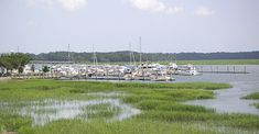 50 Things to Do in Beaufort, SC | Visit Beaufort South Carolina | Official Beaufort Website