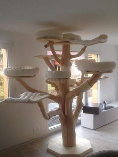 arbre a chat confort Diy Cat Tree, Cat Trees, Maine Coon Cats, For Cats, Dog Playground, Snowshoe Cat, Catio, Cattery, Diy Dog
