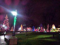 The Christmas tree Forest , London , Ontario Park Lighting, Christmas Tree Forest, Forest City, My Town, Origins, Ontario, Holiday Ideas, Art Projects, Street Art