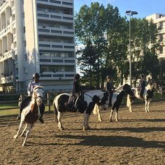Alice Arnold: how horse riding is changing lives on a council estate - Good Housekeeping